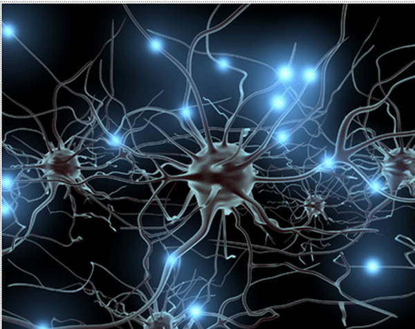 Tras jugar media hora al día durante dos meses, se constató el aumento de neuroplasticidad en algunas áreas cerebrales.