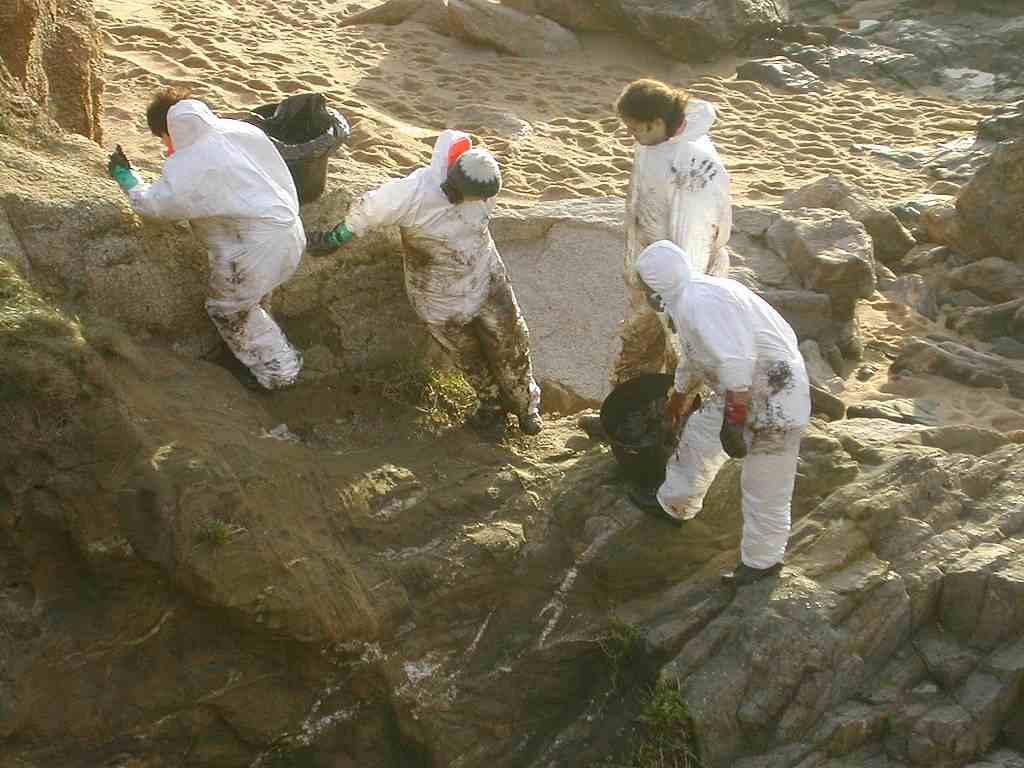 Voluntarios recogiendo chapapote del Prestige