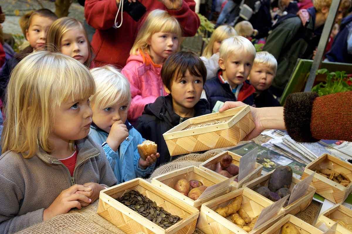 La promoción de la salud en los colegios sí que mejora la salud de los niños