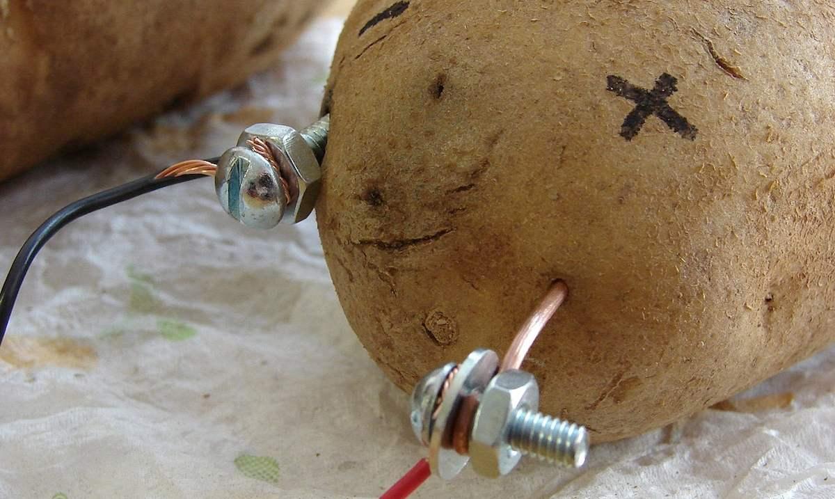 Batería de patata