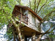 Airbnb empezará a pagar tasas hoteleras en San Francisco