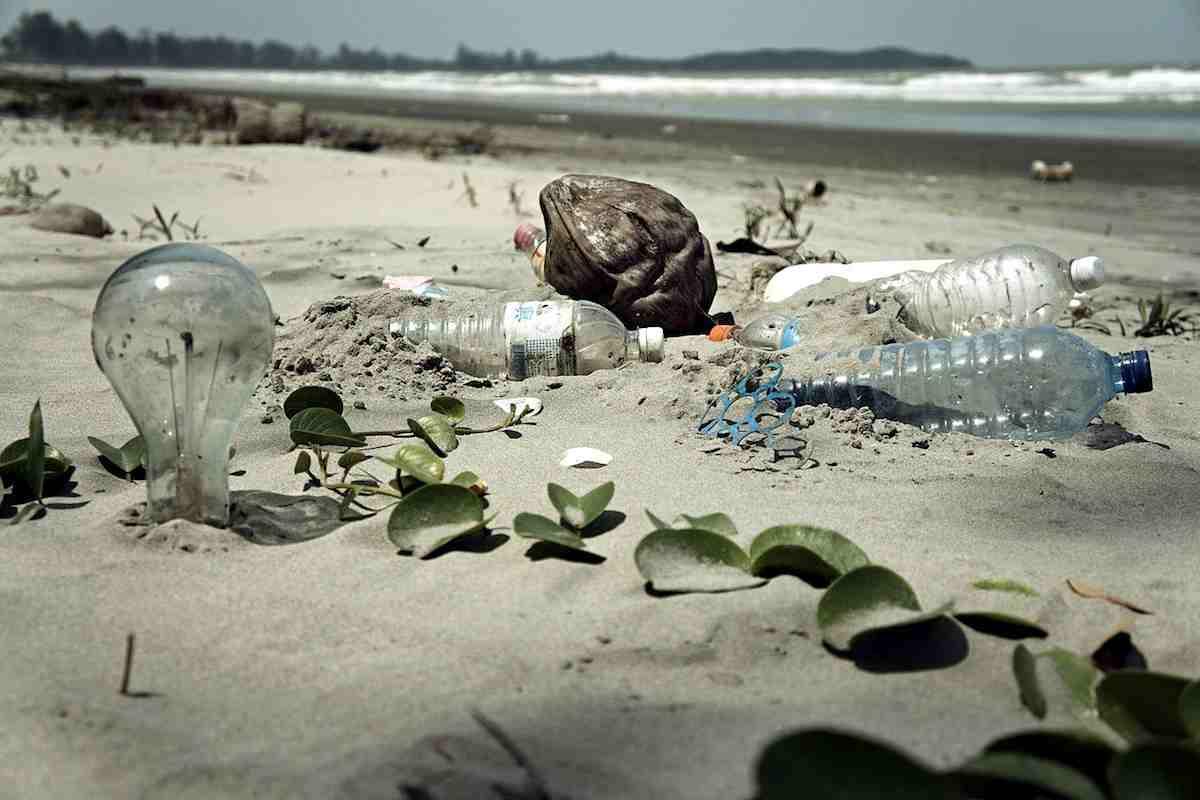 El desafío de obtener un bioplástico sostenible de verdad