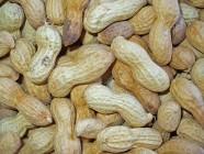 La harina de maní que no pondrá en peligro a los alérgicos