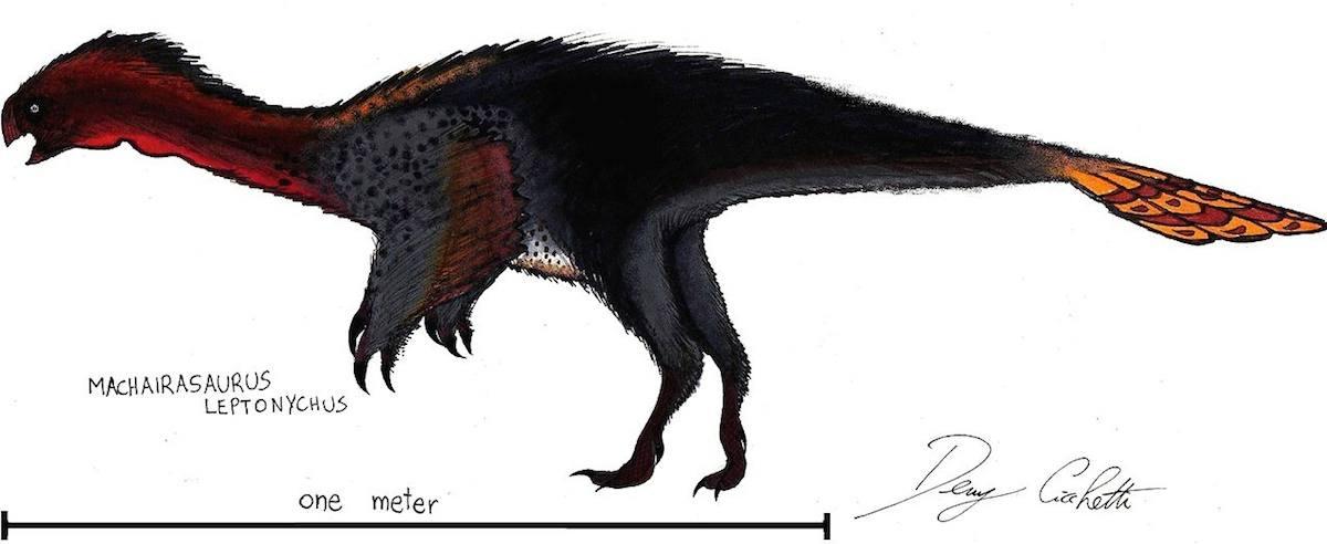 Machairasaurus