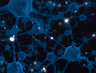 neuronas formando una red