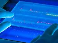 Ya se pueden detectar mutaciones genómicas asociadas al cáncer en pocas horas