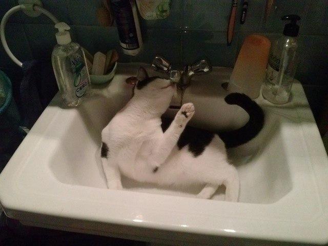 Mac en el lavabo