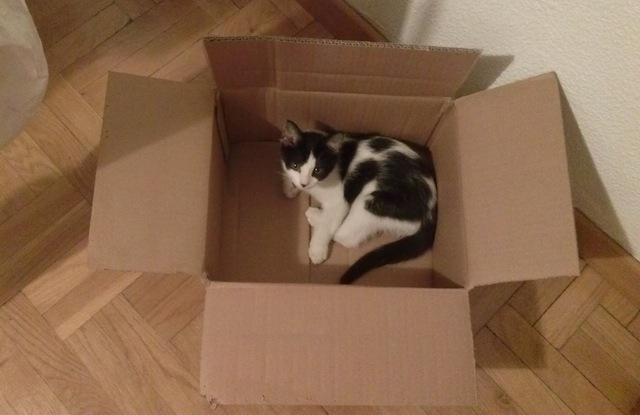 Mac en una caja