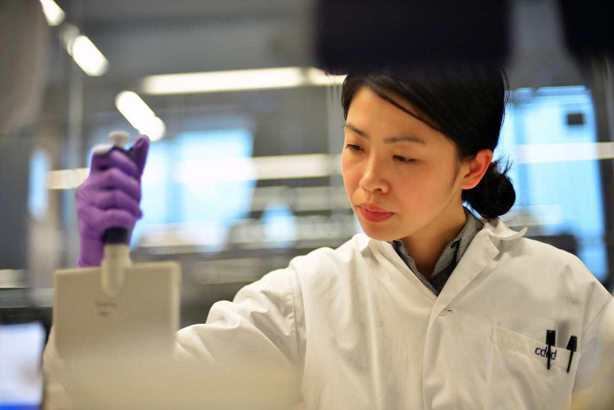 Modificaciones químicas logran transformar células de la piel en neuronas