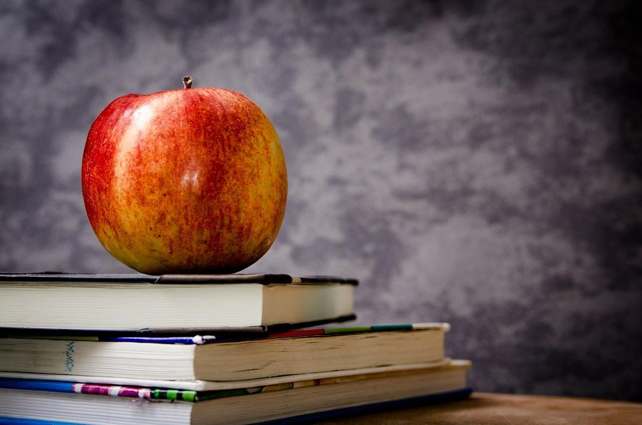Reformar la Educación no es meter tecnología