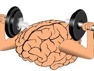 ¿Funcionan realmente los brain games?