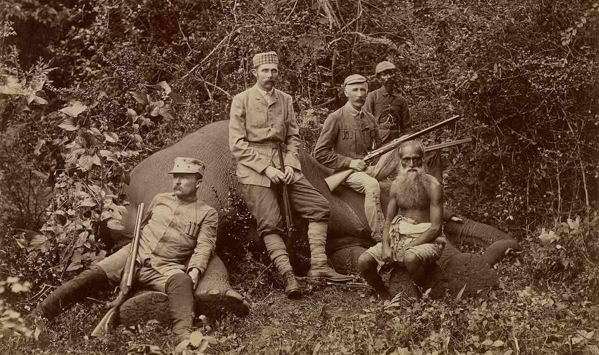 Cazadores de elefantes